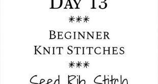Seed Rib Stitch Knit Stitch : Day 13 of the 21 Days of Beginner Knit Stitches : ...